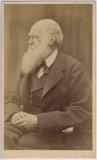 Charles Darwin 1871